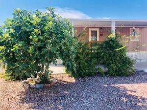 540 E Catfish Lane, Tonto Basin, AZ 85553