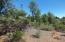 1008 N Scenic Drive, Payson, AZ 85541