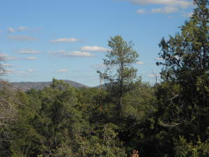 2303 E Feather Plume Lane, Payson, AZ 85541