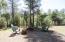 5288 N Louthian Circle, Strawberry, AZ 85544