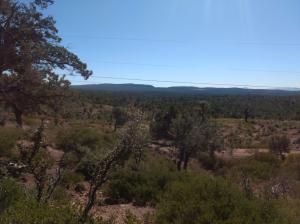 36 Antelope Trail, Christopher Creek, AZ 85541
