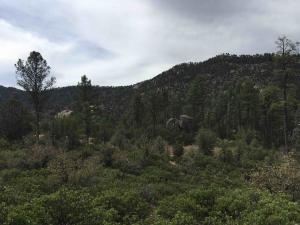 Stunning 2.08 Acre Lot to Build Your Dream Home.