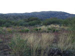 31 Tatum Trail, Payson, AZ 85541