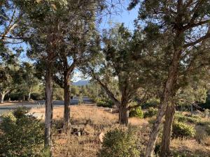 2301 E Scarlet Bugler Circle, Payson, AZ 85541
