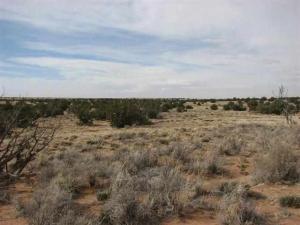 Lot 632 Chevelon Canyon Ranch #4, Overgaard, AZ 85933