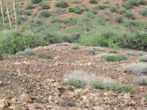 lot 144 Over Hill Road, Globe, AZ 85502