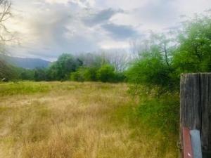 100 A N Mining Company Road, Tonto Basin, AZ 85553