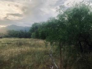 100 B N Mining Company Road, Tonto Basin, AZ 85553