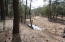 350 N Coyote Trail, Christopher Creek, AZ 85541