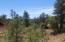 4324 N Kiva Circle, Pine, AZ 85544