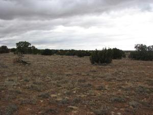 Lot 520 Chevelon Canyon Ranch, Overgaard, AZ 85933