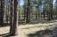 4691 Lariat Way, Happy Jack, AZ 86024