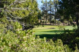 2708 E Coyote Mint Circle, Payson, AZ 85541