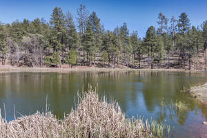 144 HUNTER CREEK Drive, Payson, AZ 85541