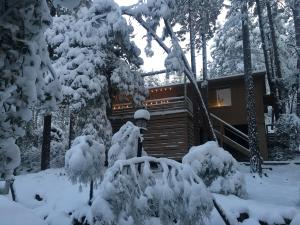 Front of cabin after fresh snowfall