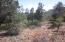 Lot 78 TURQUOISE CIRCLE Circle, Pine, AZ 85544
