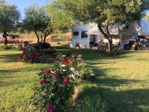 112 E Nip n Tuck Drive, Tonto Basin, AZ 85553
