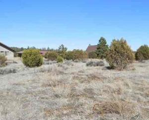 2238 SITGREAVES Drive, Overgaard, AZ 85933