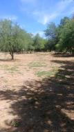 170 E EL VAGAMUNDO, Tonto Basin, AZ 85553