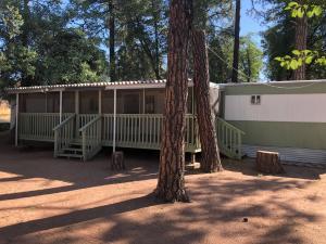 1323 N Woodland Drive, Payson, AZ 85541