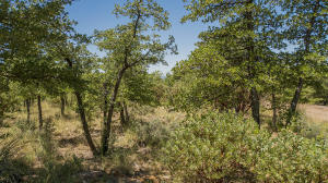 Lot 12 E Hoot Owl Trail, Payson, AZ 85541