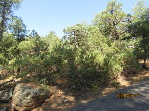 70 N Naco, Pine, AZ 85544