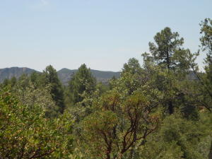 701 N Trailhead Drive, Payson, AZ 85541