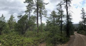 xxxx Pine Cone Trail/ 11P Donnas Wa, Pine, AZ 85544