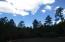 4525 (106) N Sundown Ln, Pine, AZ 85544
