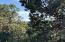 xxxx Lodgepole Circle, Pine, AZ 85544