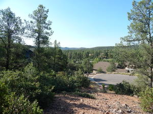 1211 N Marissa Circle, Payson, AZ 85541