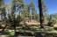 Beautiful, serene, setting in Pine, AZ