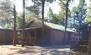2720 High Pine Loop, Overgaard, AZ 85933
