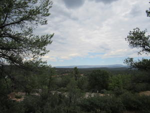 1100 N Heather Circle, Payson, AZ 85541