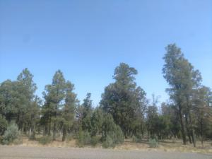 6889 Whispering Pine Drive, Happy Jack, AZ 86024