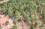 1165 Ranch Road, Payson, AZ 85541