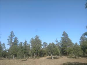 2809 Hidden Creek Circle, Happy Jack, AZ 86024