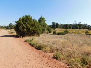 2769 SUNFLOWER DRIVE, Overgaard, AZ 85933