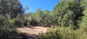 Lot 20-21 E Willow Circle, Payson, AZ 85541