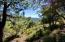 16 Canyon Vista, Pine, AZ 85544