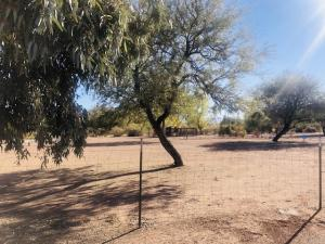 55 E Fast Lane, Tonto Basin, AZ 85553