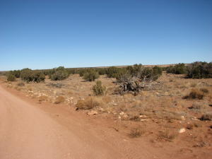 5903 Cow Bell Road, Heber, AZ 85928