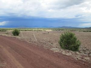 0 Lot 011D Big Six Ranches, Vernon, AZ 85940