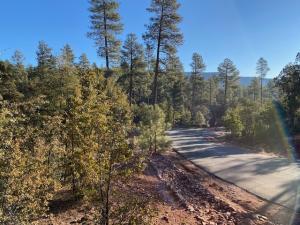 71 Forest Trail, Pine, AZ 85544