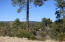 TBD N Valley Road, Star Valley, AZ 85541