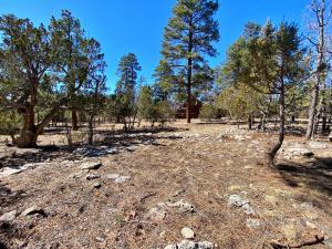 2067 Sugar Pine Drive, Happy Jack, AZ 86024