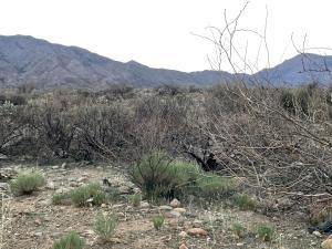 3G W Elmer Lane, Tonto Basin, AZ 85553