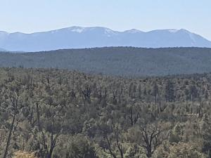 36/37 Antelope Trail Road, Payson, AZ 85541