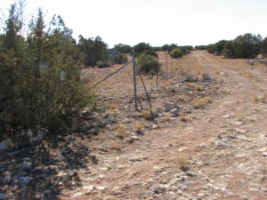 1131 Buffington Hill Road, Heber, AZ 85928