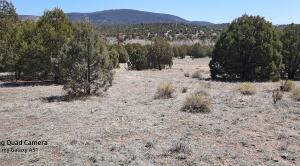 2S-B N State Route 288, Young, AZ 85554